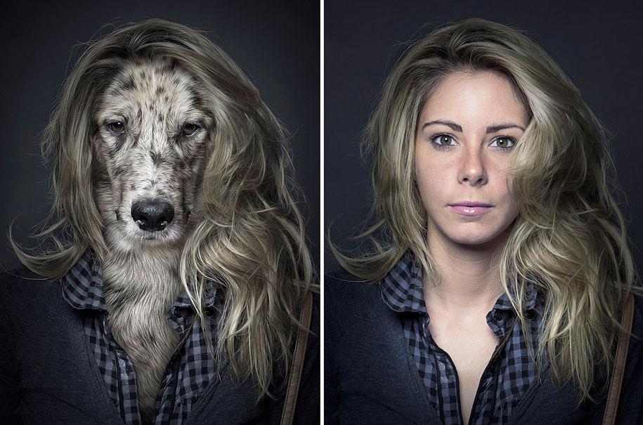 Psi u stilu njihovih vlasnika